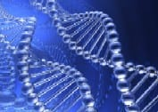 A graphic representing two DNA strands