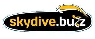 skydive buzz logo